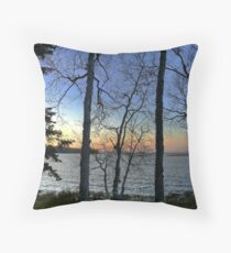 Haviland November Throw Pillow