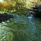 Stream Crossing by alice-anne