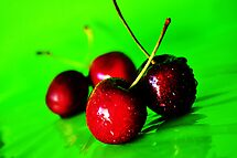 The Poison Cherry by Bianca Turner