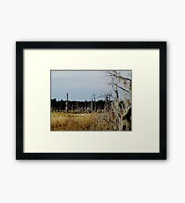 Flying Northwest Framed Print