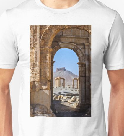 Palmyra; the desecration continues  T-Shirt