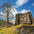 Scottish Broch. by Dave Hare