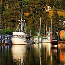 Fishing Fleet by Barbara  Brown