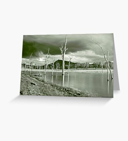 Ghost Tree Cove Greeting Card