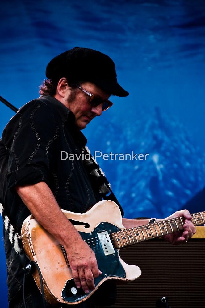 Guitarist by David Petranker