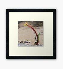 Beach Living Multi-Colour Framed Print