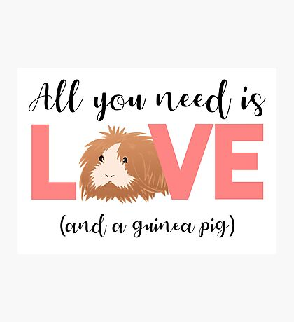 GUINEA PIG - ALL YOU NEED IS LOVE AND A GUINEA PIG Photographic Print