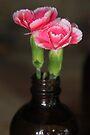 Carnation Bottle by Emma Holmes