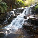 The Falls,  Blue mountains, NSW, Autralia by Andrew Croucher