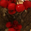 Berry Me Tree by Emma Holmes