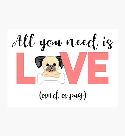 Pug - All you need is love and a pug Photographic Print