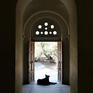 Resting In The Church Of The Holy Apostles by Emma Holmes