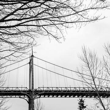 Architectural shot of St. Johns Bridge in Portland by cheesim