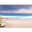 Sydney Beach by Kirk  Hille