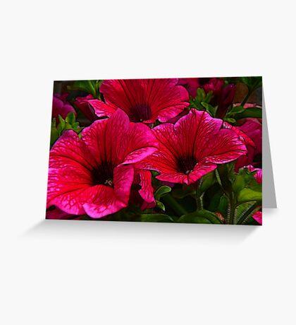 Fractalius Petunias Greeting Card