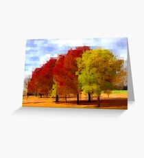 445 Greeting Card