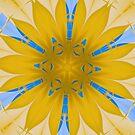 Magnetic Flower Symbol by Joan Marie Flaherty