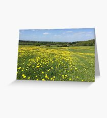 Buttercups Overlooking Oxford Greeting Card