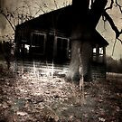 The Crooked Barn by Nikki Smith (Brown)