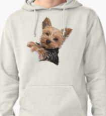 Chewie the Adorable Yorkie Pullover Hoodie