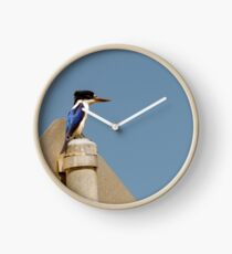 Forest Kingfisher Clock