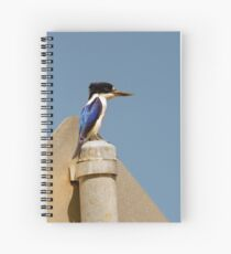 Forest Kingfisher Spiral Notebook