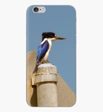 Forest Kingfisher iPhone Case