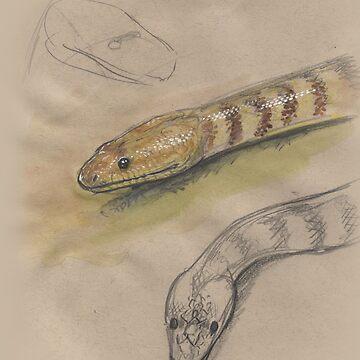 Woma Python by SnakeArtist