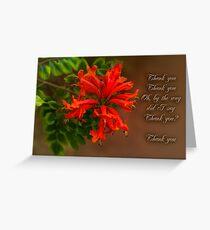 Trumpet Creeper (Pyrostegia) Greeting Card
