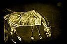 Horse  by LudaNayvelt