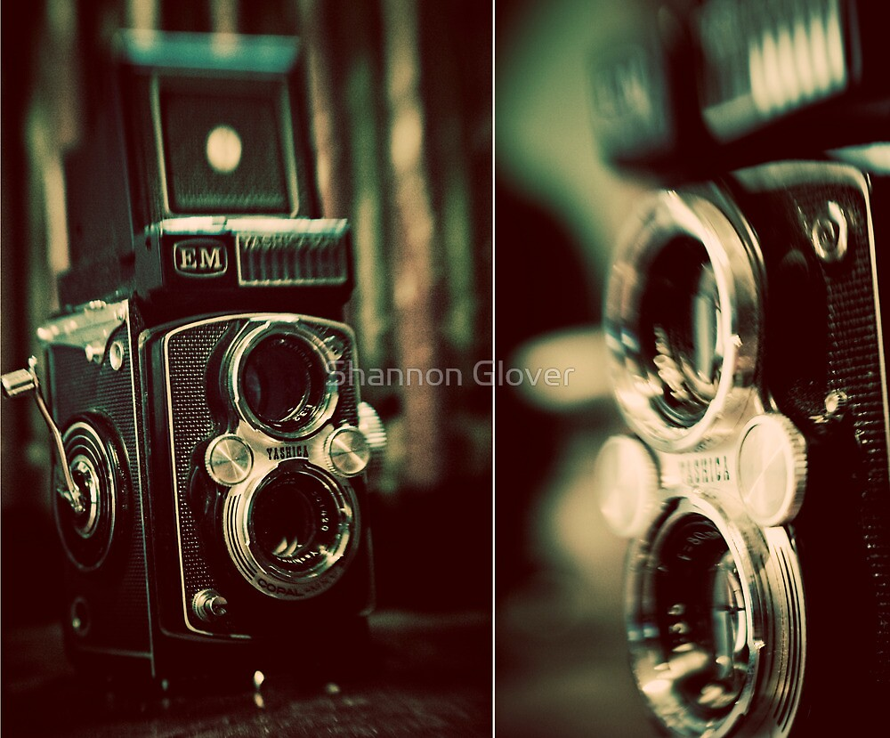 vintage fascination by Shannon Glover