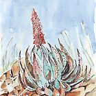 «Aloe peglerae» de Maree Clarkson