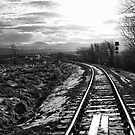 The Train Line by Lynne Morris