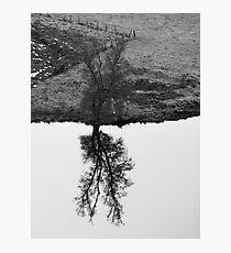 Stark Photographic Print