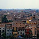 Verona Rooftops by Paul Finnegan