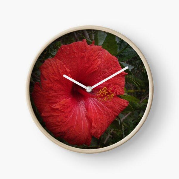 Red gumamela Clock