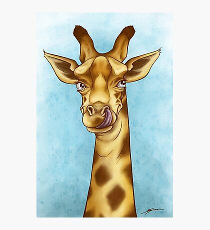 Silly Giraffe Photographic Print