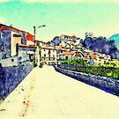 Entrance road to Papasidero by Giuseppe Cocco
