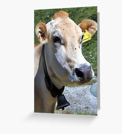 Look At Me I Am A Pretty Cow Greeting Card
