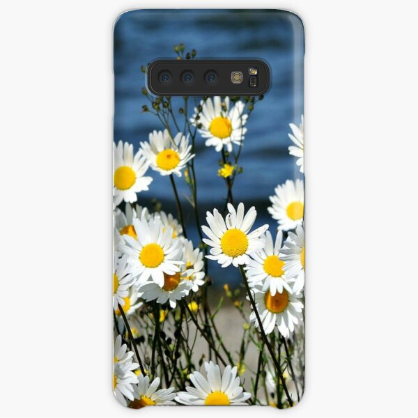 Daisy-Daisy, beautiful blooming flowers Samsung Galaxy Snap Case