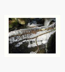 Mountain Stream Ice 4 Art Print