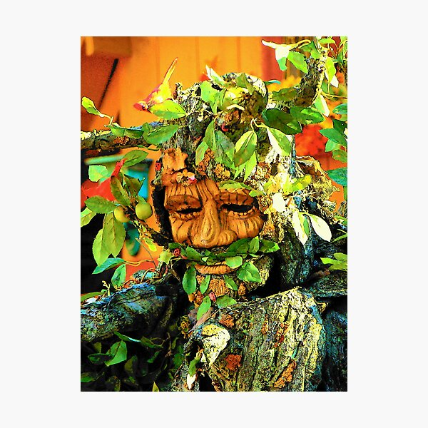 Green Man Photographic Print