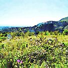 Flowery meadow with landscape of Calabria by Giuseppe Cocco