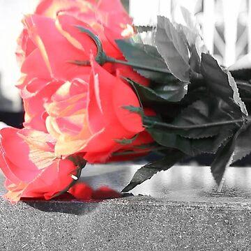 Grey Rose by irishalien