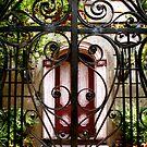 The Red Door by Benjamin Padgett