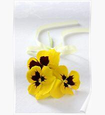 yellow pansies Poster