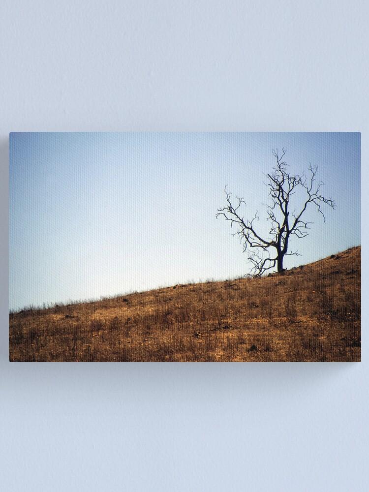 Alternate view of Desolation Canvas Print