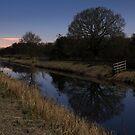 Shapwick Heath by Moonlight by kernuak