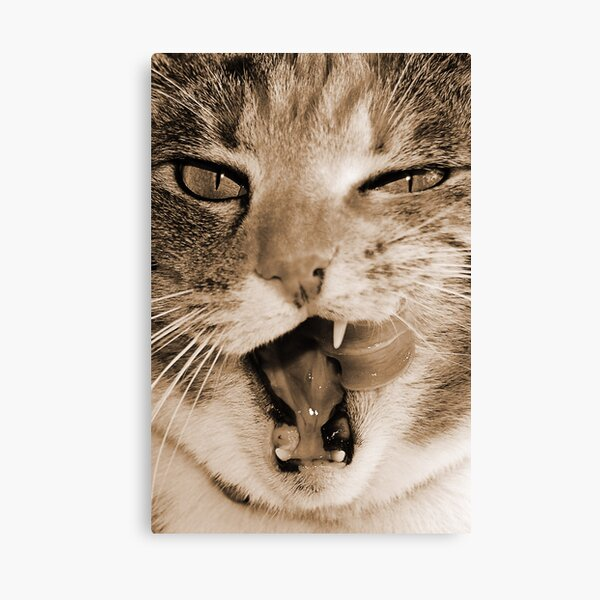 That Was Delicious Canvas Print