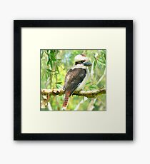 Laughing Neighbour Framed Print